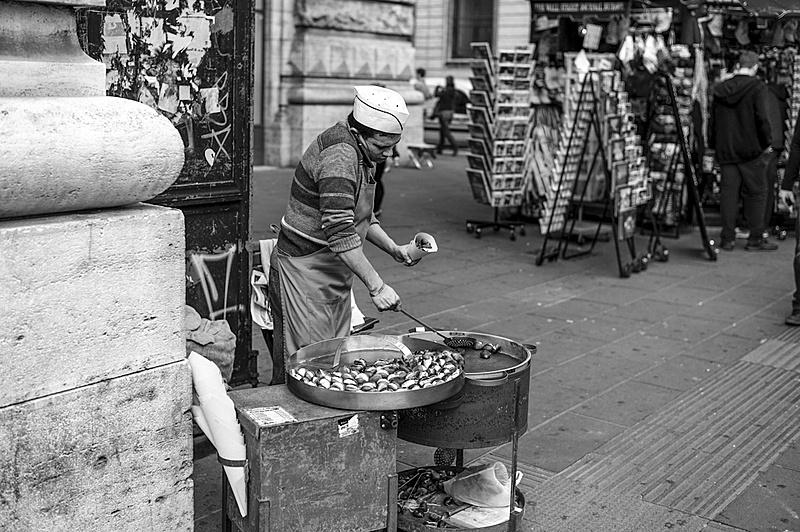 Trabajos de ciudad-castanero-en-roma.jpg
