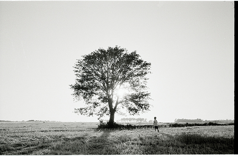 Fotos de muestra: Leica Summicron-M 28 mm f:2,0 ASPH-danielbelenguer-006913.jpg