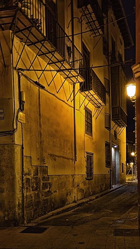 Nocturnas de Valencia-17112013-l1010066-editar.jpg