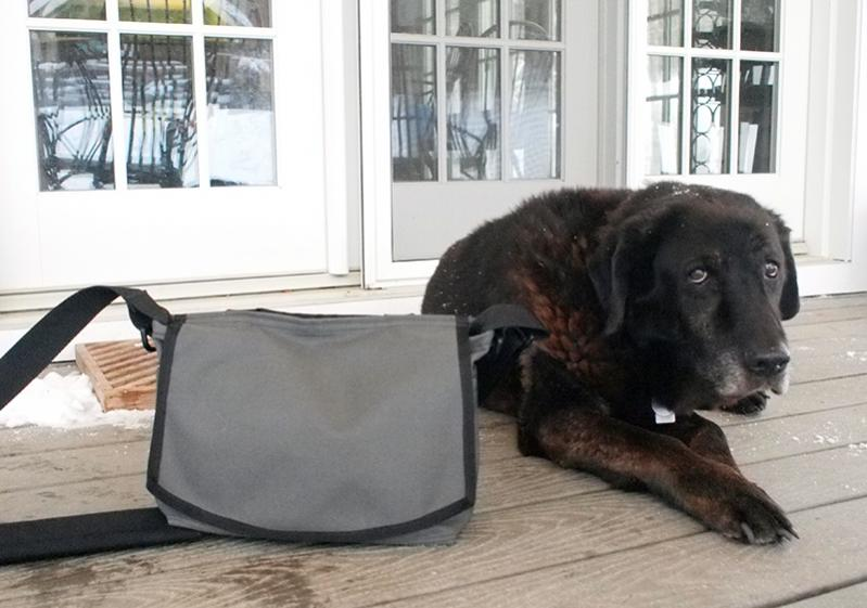 ¿Que bolsa me compro?-tiggerandbbbt_0.jpg