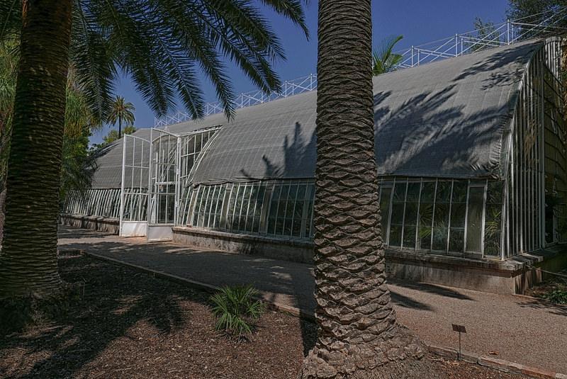 18093532395 4271070998 c 1 - Jardín botánico de Valencia