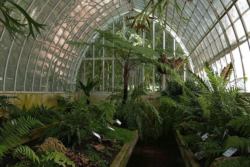 18094473881 0679ec873f c 1 - Jardín botánico de Valencia