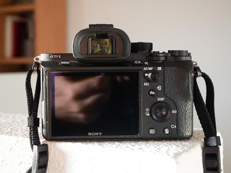 46131850475 fd6da05563 o 1 - Sony A7RII (1250 disparos) y Zeiss Loxia 50/2 casi a estrenar
