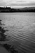 C_sar-06122012-82.jpg