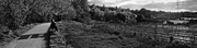 Panorama_sin_t_tulo4.jpg