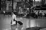 ML-Tren.jpg
