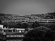 tren-1007513.jpg