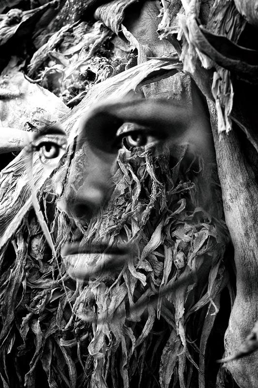"""La dama - """"El bosque petrificado"""""""